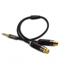 iXCC 3.5mm Male to 2 RCA Female