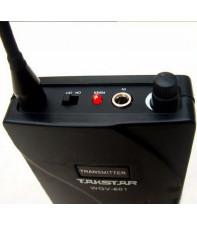 Радиосистема инструментальная Takstar WGV-601