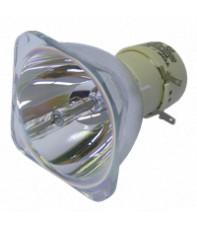 Лампы для проектора Optoma BL-FU190D