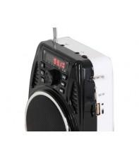 Универсальная радиосистемы с головным микрофоном IBIZA PORT3-UHF