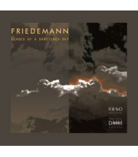 Виниловый диск LP Friedemann: Echoes Of A Shattered Sky