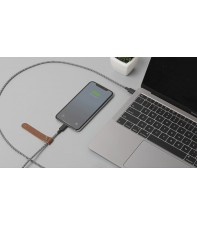 Кабель Native Union Belt Cable USB-C to Lightning Zebra (1.2 m) (BELT-KV-CL-ZEB-2)